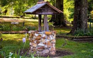 Декор настоящего и декоративного колодца на даче (20 фото)
